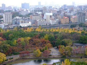 View from the top floor of Osaka Castle