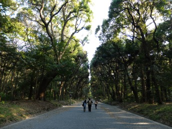 Walking towards Meiji Shrine