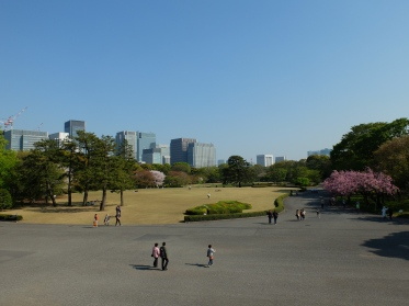 Imperial Palace East Garden. You can't even see the Imperial Palace from this vast amount of space in the heart of Tokyo