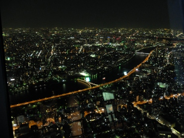 Night time in Tokyo viewed from the top!