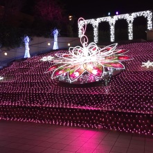Super Flower Illumination